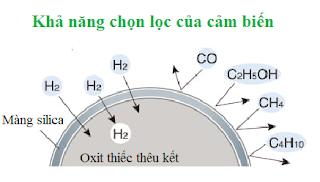 Khả năng chọn lọc của cảm biến khí Cosmos
